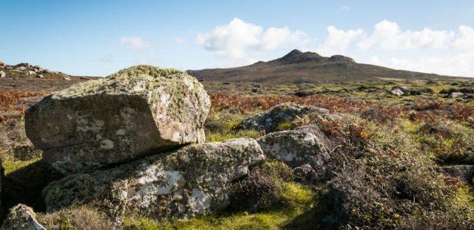 Discover the Preseli Hills